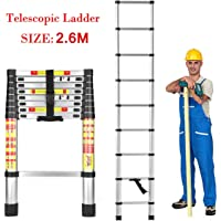Dayalu Aluminium Telescopic Folding Step Ladder, 2.6 m (8.5 Feet, Height, Silver)