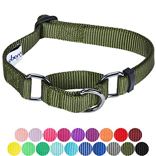 Blueberry Pet 19 Colors Safety Training Martingale Dog Collar, Military Green, Large, Heavy Duty Nylon Adjustable Collars for Dogs ()