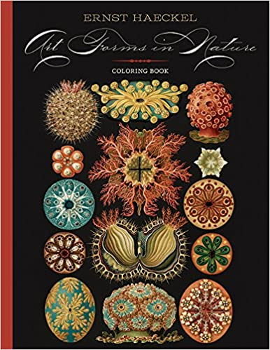 Amazon.com: Ernst Haeckel: Art Forms in Nature Coloring Book ...
