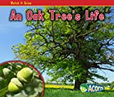 An Oak Tree's Life, Nancy Dickmann, 1432941526