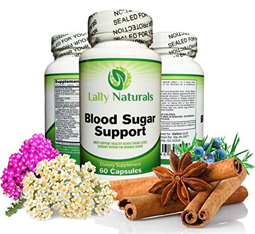 Blood Sugar Support (120 Capsules) - Promotes blood glucose control & healthy blood sugar levels ★ Helps Weight Loss & Reduces Carb Absorption ★ 20 Synergistic Natural herbs with Cinnamon -