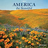 Goldistock -''America - from Sea to Shining Sea'' Eco-Friendly 2019 Large Wall Calendar - 12'' x 24'' (Open) - Thick & Sturdy Paper - Celebrating The Beauty of America