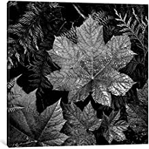 """iCanvasART AAD16-1PC6-37x37 iCanvas In Glacier National Park XXIII Gallery Wrapped Canvas Art Print by Ansel Adams, 37"""" X 1.5"""" X 37"""""""