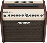 Fishman Loudbox Mini PRO-LBX-500 Acoustic Instrument Amplifier w/Bonus Dunlop DTC1 Tuner 605609154446