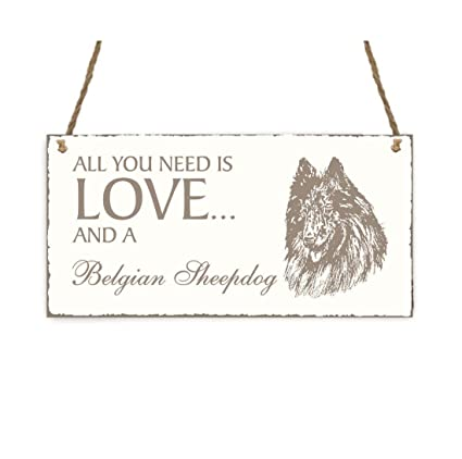 Placa decorativa, « All You Need is Love And A Belgian ...