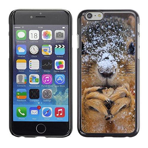 """Premio Sottile Slim Cassa Custodia Case Cover Shell // F00013233 Écureuils // Apple iPhone 6 6S 6G 4.7"""""""