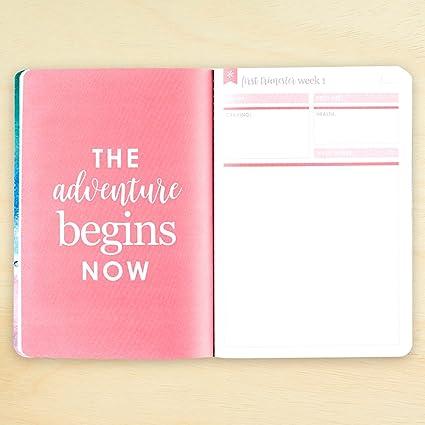 Amazon.com: Erin Condren Planificador serie de libros y ...