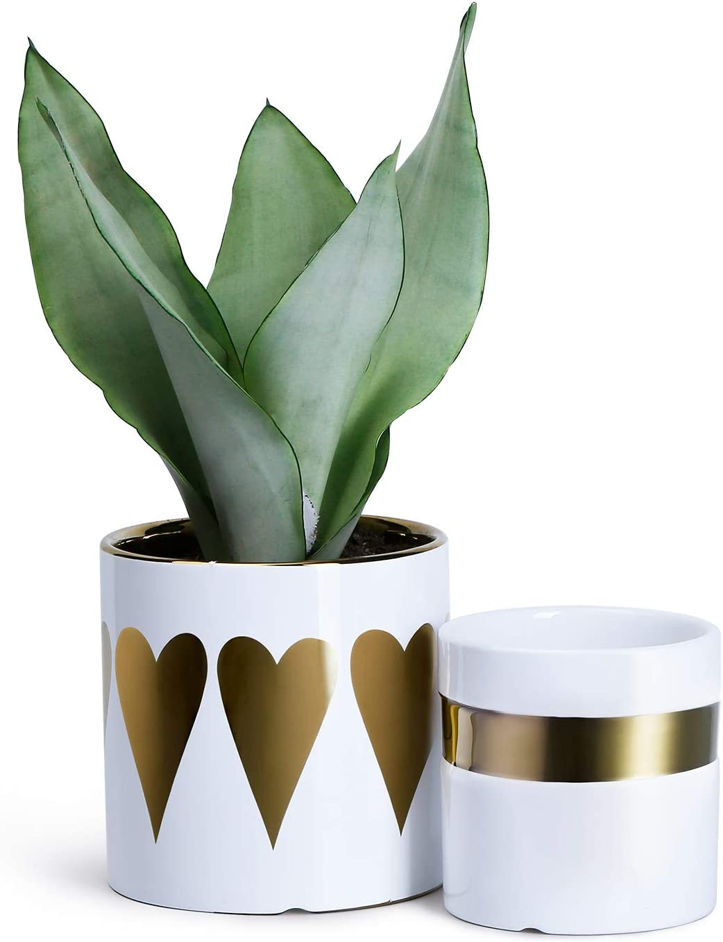 Greenaholics Plant Pots – 4.7 4.3 Inch Electroplated Ceramic Planters with Pattern Decor, for Succulents, Small Plants, Set of 2, Gold White
