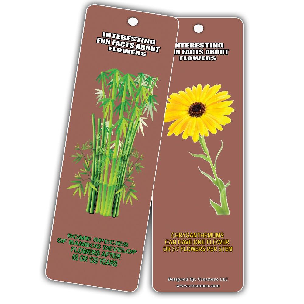 Amazon Creanoso Interesting Fun Facts About Flowers Bookmarks
