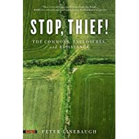 Stop, Thief! : The Commons, Enclosures, And Resistance (Spectre)