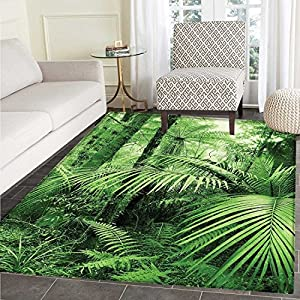 61IwClvDACL._SS300_ Best Tropical Area Rugs