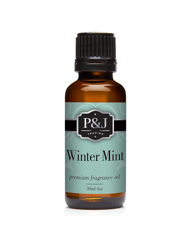 P&J Trading Winter Mint Fragrance Oil - Premium Grade Scented Oil - 30ml