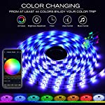 DAYBETTER LED Strip Lights, Smart LED Lights 16.4ft Waterproof 5050 RGB 150 LEDs Color Changing Controlled by Phone APP…