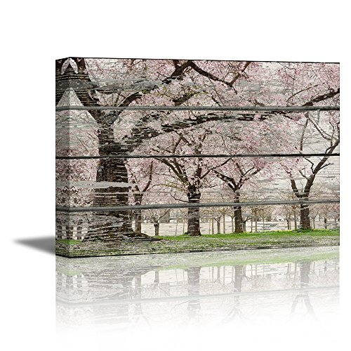 Cherry Blossom in Spring on Vintage Wood Background Rustic ation