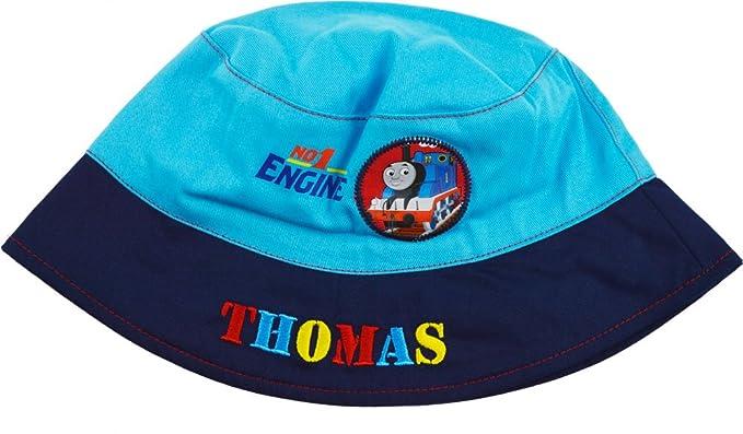 Boys Thomas the Tank Engine Summer sun Bucket hat   cap  Amazon.co ... bff80491ba1