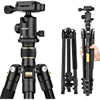 Lightweight Aluminum Camera Tripod, K&F Concept 62-Inch Compact Travel DSLR Tripod Portable Tripod with Ball Head and Carry Bag for Digital SLR Cameras/Video Cameras/Camcorders