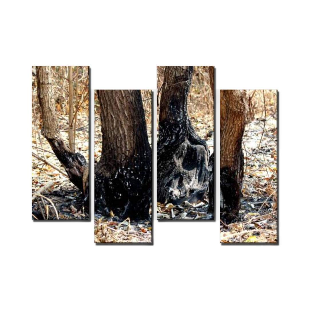 4 Panel Tree Forest After The fire Pollution, Global Warming rebirths and Canvas Wall Art Ocean Oil Painting Animal Prints City Poster Flower Pictures Home Wall Decoration for Artwork