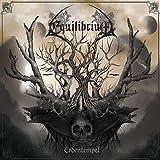 Equilibrium: Erdentempel (White) [Vinyl LP] (Vinyl)