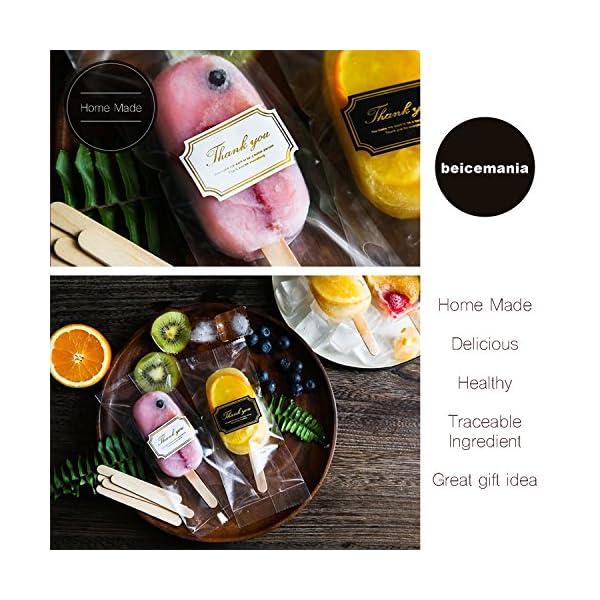 Popsicle Molds Stampo Per Gelato Popsicle Maker Popsicle Stampi Ghiacciolo Porpora Ellittico Con Popsicle Stick… 6 spesavip