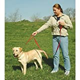 The Grrrip Two Handled Dog Leash – 3/4″ x 4′ Red, My Pet Supplies
