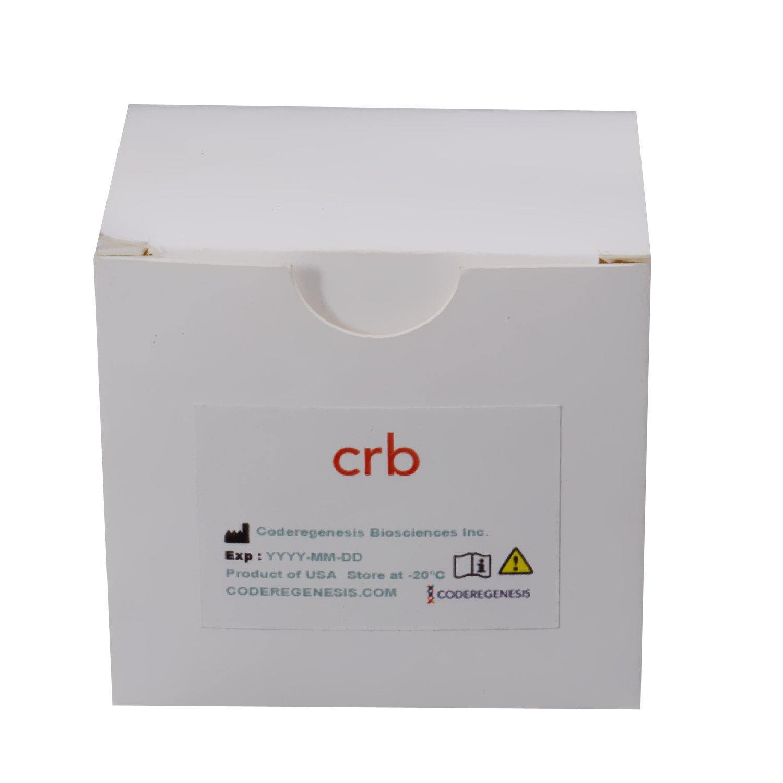 PCR-Sure™ Kit
