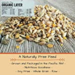 Scratch and Peck Feeds – Naturally Free Organic Layer Feed for Chickens and Ducks – Non-GMO Project Verified, Soy Free and Corn Free – 25-lbs