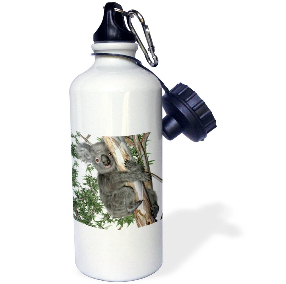 3D Rose 2 wb/_239406/_2 Flip Straw Water Bottle 21 oz