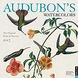 Audubon s Watercolors 2017 Wall Calendar: The Original Birds of America