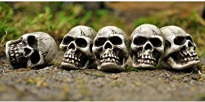 LXQ FAIRY GARDEN Miniature Dollhouse ~ Skulls Set of 5 ~