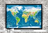 Push Pin Travel Map - Physical World Map - Large Framed Map