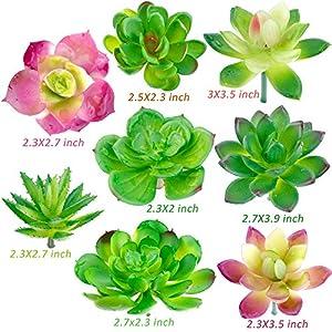 Augshy 24 Pack Artificial Succulent Plants Unpotted Mini Fake Succulents Plant for Lotus Landscape Decorative Garden Arrangement Decor 4