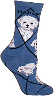 product image for Wheel House Designs Maltese Puppy Argyle Socks (Shoe size 9-12)