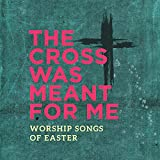The Cross Was Meant for Me: Worship Songs for