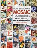 Compendium of Mosaic Techniques: 300 Tips, Techniques, Trade Secrets and Templates
