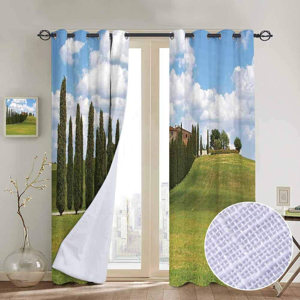 hengshu Tuscan Wear-Resistant Color Curtain Landscape Abandoned Farm House Vineyard on Hill Tall Trees Village Path 2 Panel Sets W96 x L108 Inch Green and Pale Blue by hengshu