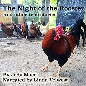 The Night of the Rooster and Other True Stories Audiobook