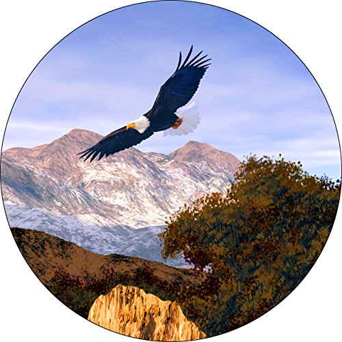 jeep eagles tire cover - 6