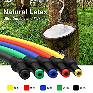 LUXSURE Resistance Bands with ...