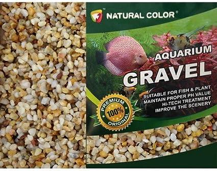 Natural Color Acuario Tanque de Peces/Estanque de jardín Pea Shingle Grava/Arena 3 – 5 mm 5 kg: Amazon.es: Productos para mascotas