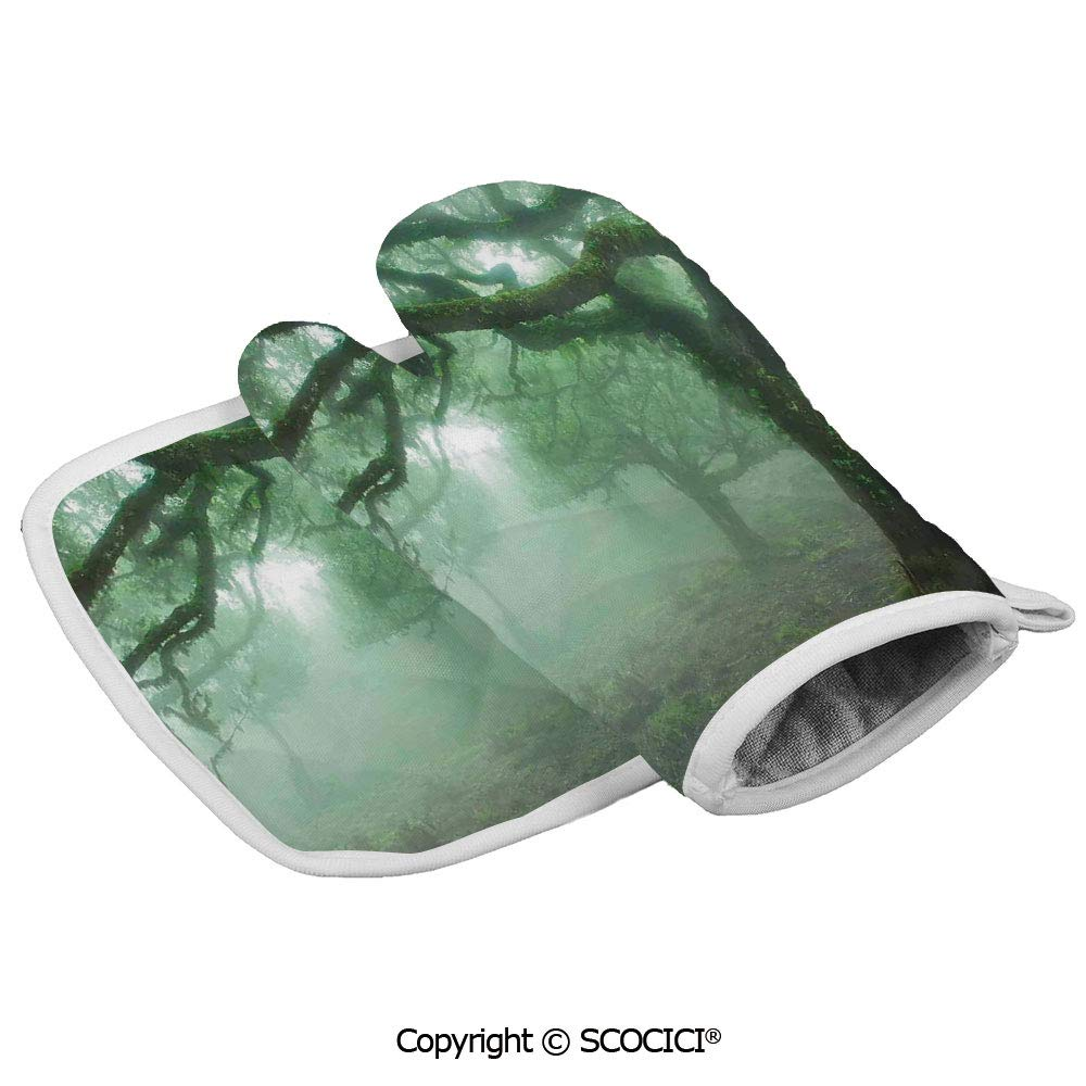 SCOCICI Oven Glove Microwave Glove Laurel Forest in Portugal Foggy October Day Wild Magical Exotic Nature Photo Barbecue Glove Kitchen Cooking Bake Heat Resistant Glove Combination