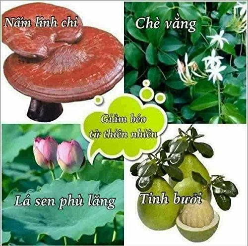 3 box (45 pack - Use 45 days) Trà Thảo Mộc giảm cân Vy & Tea -Vy & Tea - natural herbal tea help weight loss, sleep deep and purifying the body by Vy and Tea (Image #7)