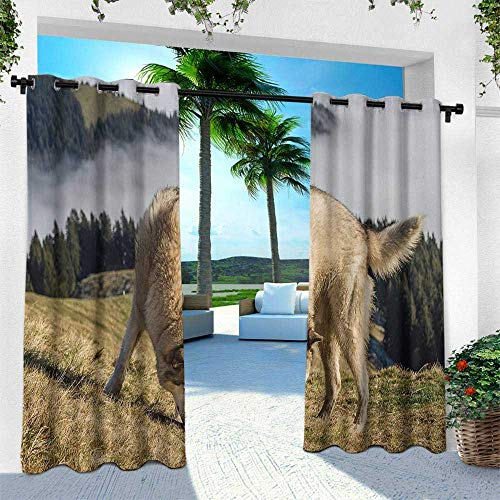 - Hengshu Alaskan Malamute, Thermal Insulated Water Repellent Drape for Balcony,Purebred Dog Foggy Mountains Trees Faithful Companion, W96 x L84 Inch, Pale Brown Dark Green Beige