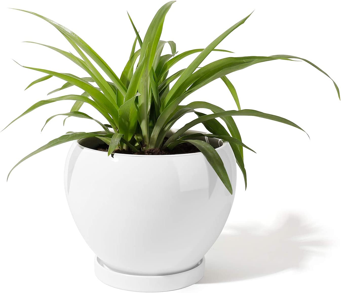 POTEY 052401 Ceramic Plant Pot Planter - Planter for Indoor Plants Flower Succulent with Drainage Hole & Saucer (Large - 6.7 Inches, White)
