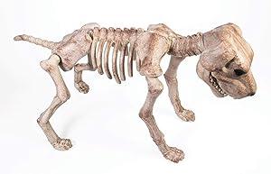 Forum Novelties Skeleton Dog Decoration, One Size