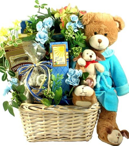 Get Well Wishes! Gourmet Get Well Gift with Teddy Bear by Organic Stores