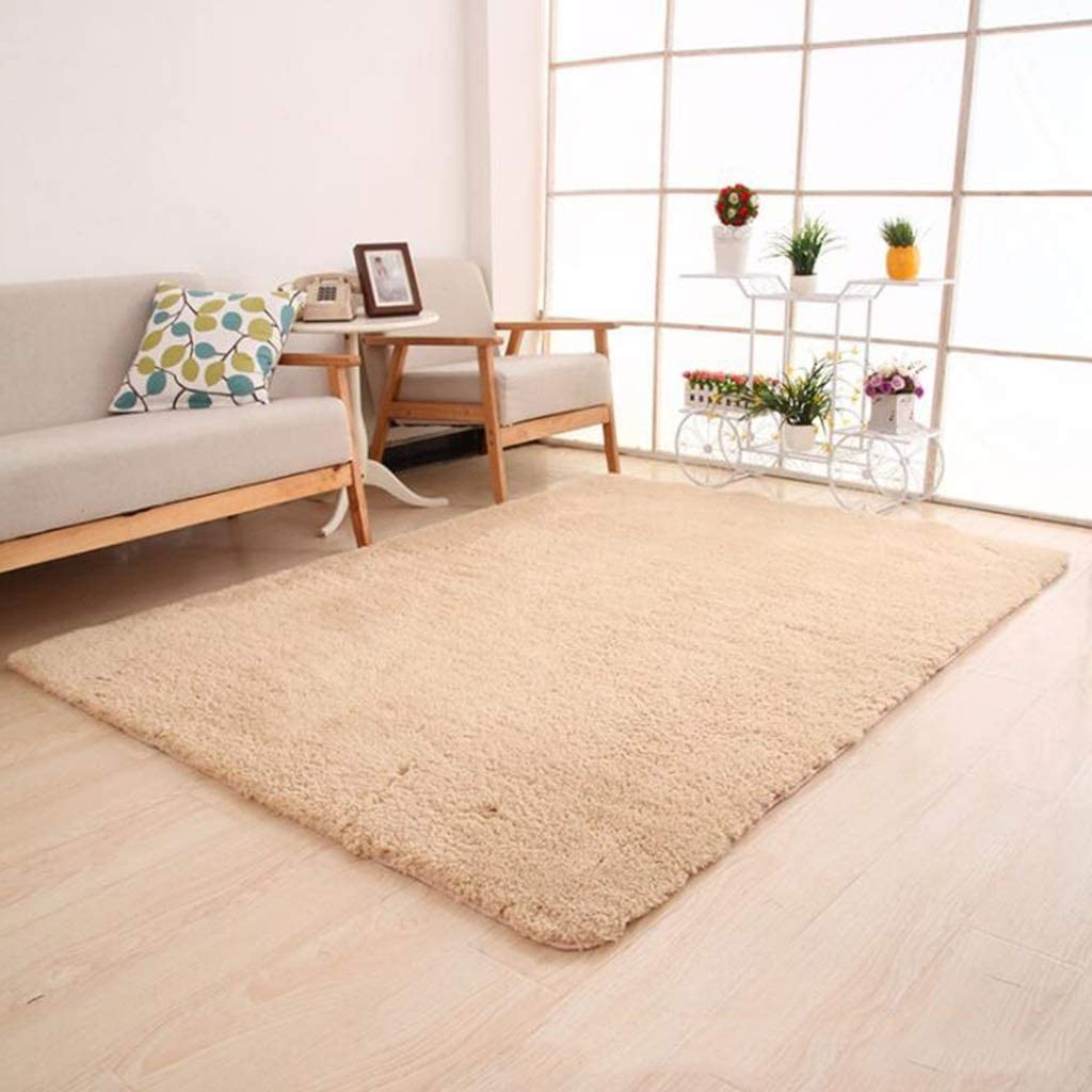 CarPet Household Thickening Living Room Bedroom Bedside Foyer Floor Mat Door Mat Color : Natural, Size : 120160cm