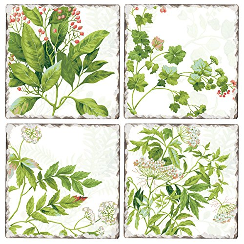 Botanical Tile - Cala Home Set of 4 Assorted Tumbled Tile Coasters, Williamsburg Meadow Fern