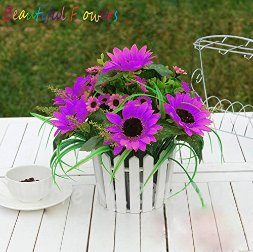 (New Arrival 30 Pcs Mini Multi-colored Dwarf Sunflower Seeds Perennial Flower Seeds Sunflower Bponsai Seeds Plant Home Garden)
