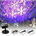 Erkeli Projector Lights 2 in1,Landscape Spotlight Waterproof LED Land Light for Christmas,House,Garden,Party Decoration