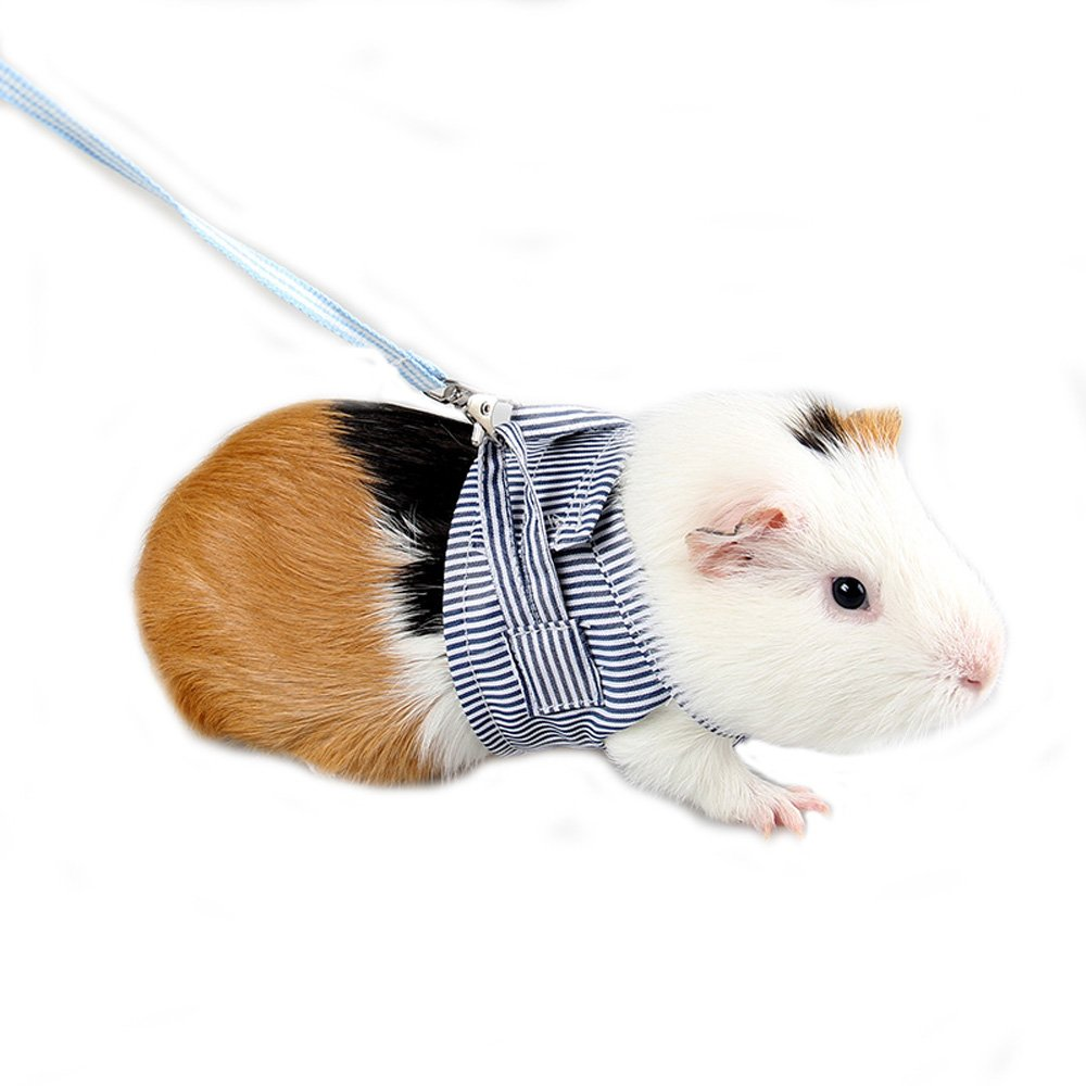 Mummumi Pet Harness, Hamster Harness Vest Leash Pet Traction Rope Chest Straps For Hamster Gerbil Rat Mouse Ferret Chinchilla Glider Squirrel Small Animals (Blue)